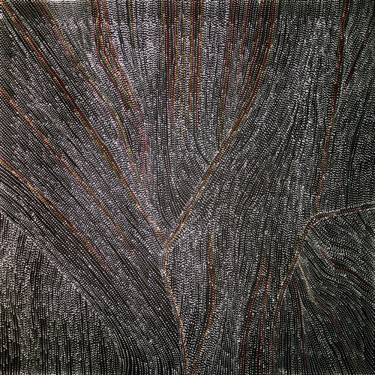 Dorothy Robinson Napangardi Salt on Mina Mina Australian Aboriginal Art Painting on canvas DN1759