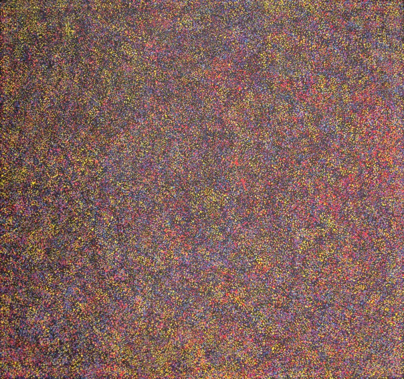 Gracie Morton Pwerle Bush Plum Australian Aboriginal Art Painting on canvas GM1882