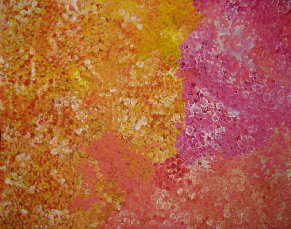 Polly Ngale Bush Plum Dreaming Australian Aboriginal Art Painting on canvas PN1762