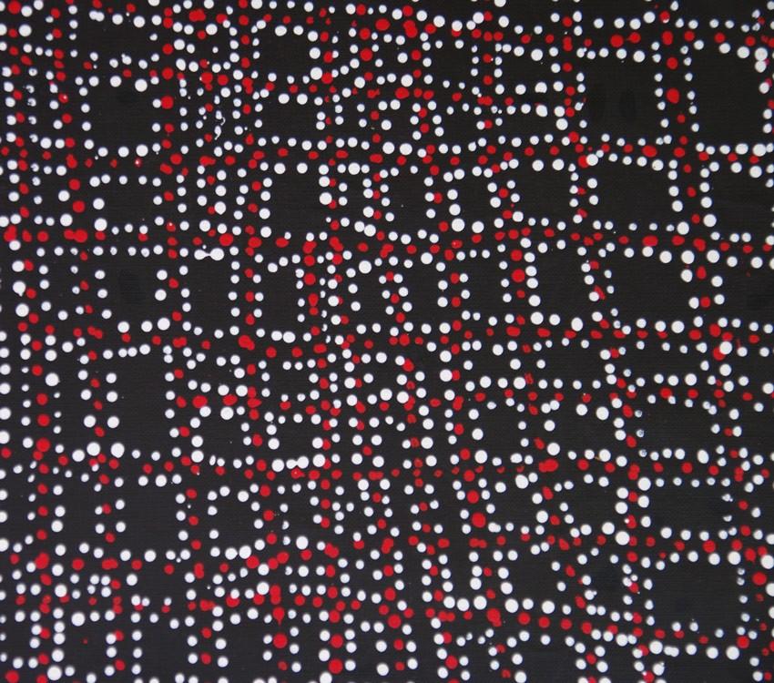 Aboriginal Art Painting on canvas by Dorothy Robinson Napangardi Salt on Mina Mina DN1758