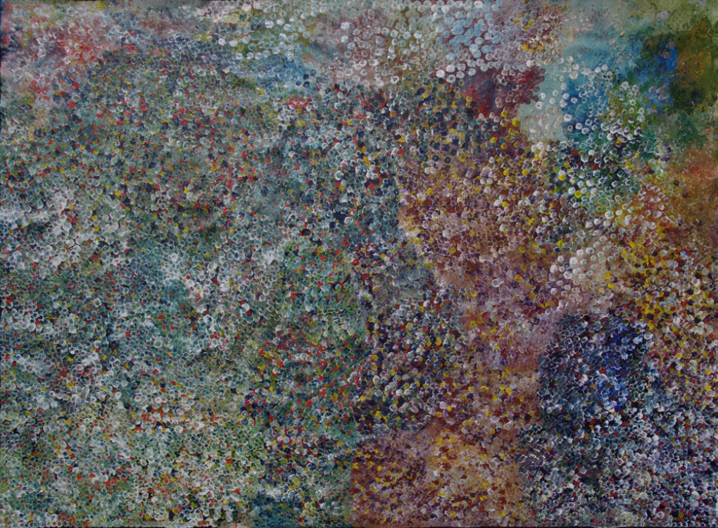 Polly Ngale Bush Plum Dreaming Australian Aboriginal Art Painting on canvas PN1931