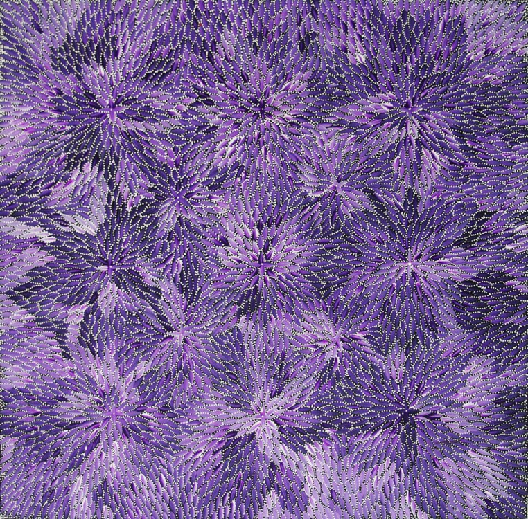 Bernadine Johnson Kamara Bush Medicine Leaves Australian Aboriginal Art Painting on canvas BJ1648