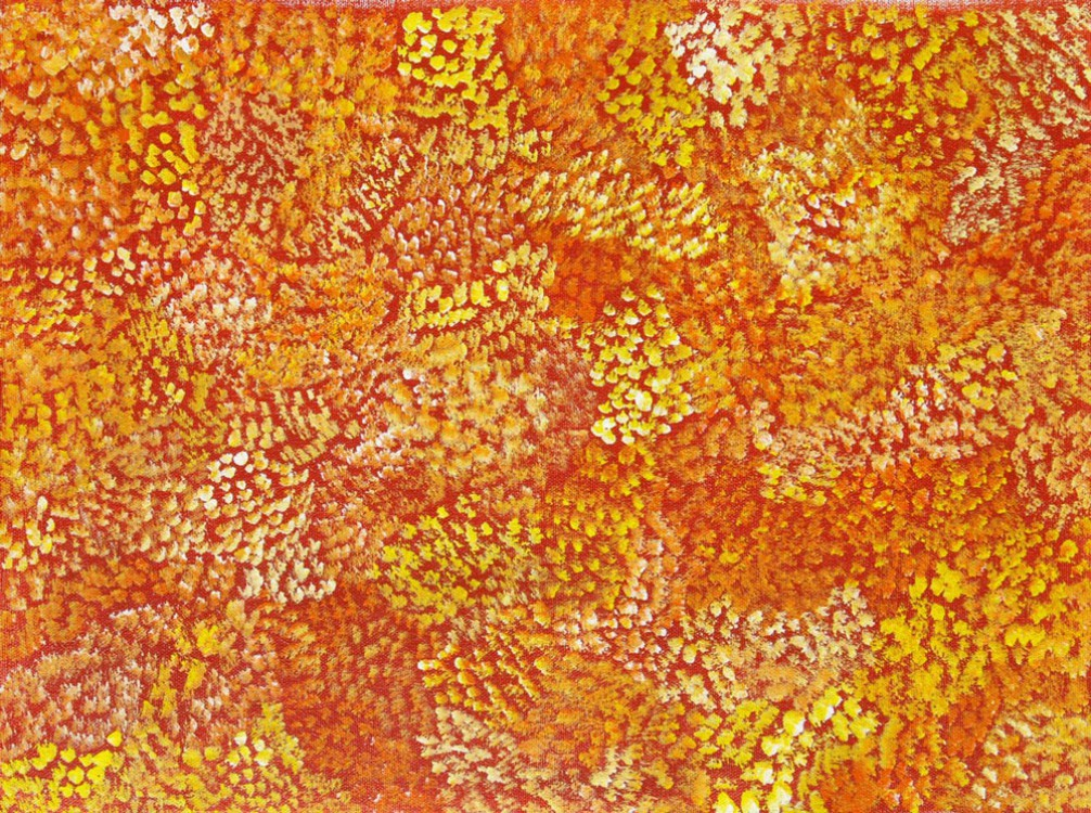 Esther Furber Bush Medicine Australian Aboriginal Art Painting on canvas EF1634
