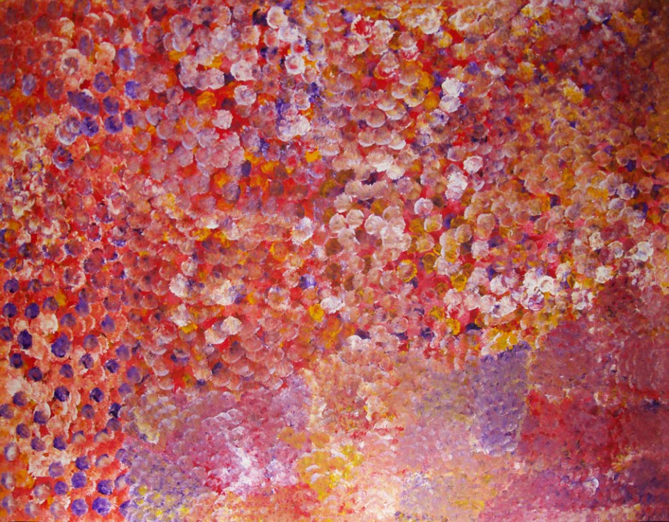 Polly Ngale Bush Plum Dreaming Australian Aboriginal Art Painting on canvas PN1654