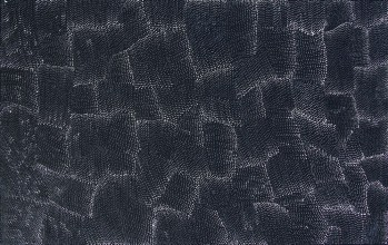 Lily Kelly Napangardi Tali Sand Hills Australian Aboriginal Art Painting on canvas LK1901